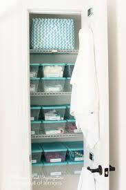 Bathroom Closet Organization Ideas Beautiful Organize Bathroom Closet Contemporary Home Decorating