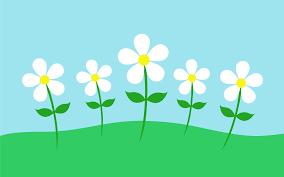 daisy flowers in simple landscape free clip art
