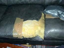 comment réparer un canapé en cuir déchiré kit reparation canape simili cuir sacduisant canape reparer canape