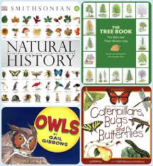 library monday great reference books for kids bird and little bird