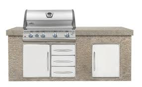 Backyard Grill 5 Burner by Napoleon Lex 5 Burner Built In Gas Grill U0026 Reviews Wayfair