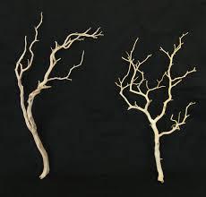 manzanita branch manzanita branches sanded manzanita 18 26in