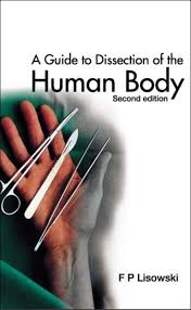 Anatomy And Physiology Coloring Workbook Chapter 16 Answer Key Anatomy Physiology Book Pdf