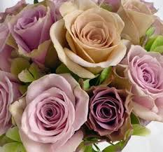 Purple Wedding Flowers 217 Best Wedding Flowers That Are Passionate About Purple Images