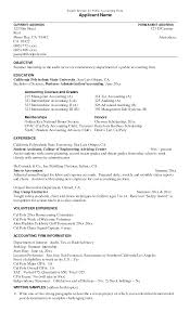 Job Resume Template College Student by Professional Accountant Resume Example