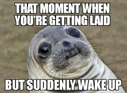 Get Laid Meme - getting laid moment awkward moment seal know your meme