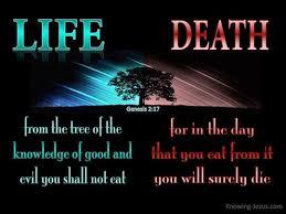genesis 2 17 verse