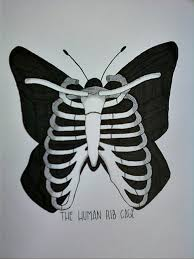 the human rib cage by optimist pryme on deviantart