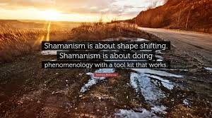shapeshifting terence mckenna quote u201cshamanism is about shape shifting