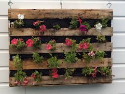 Pallet Garden Wall by An Old Wooden Pallet An Inexpensive White Tarp Liner 2 Cu Ft Of