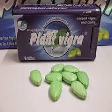 obat perangsang pria plant vigra tablet