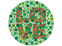 Color Blindness In Children 23 Best How Vision Works Images On Pinterest Visual Impairment