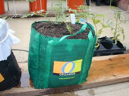 Bag Gardening Vegetables by Global Buckets Grow Bags