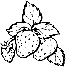 awesome free printable strawberry fruit coloring pages for kids