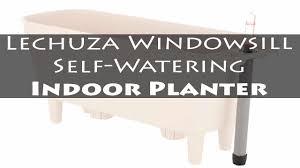lechuza windowsill self watering indoor planter the best