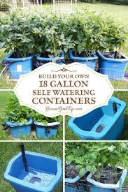 build your own self watering containers best urban gardening
