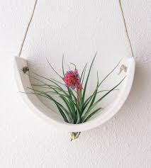 hanging air plant white ceramic hanging air plant cradle features ceramic and