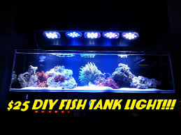 Led Versus Fluorescent Light Bulbs by 25 Diy Fish Tank Light Abi 12 Watt Blue White Par38 Youtube