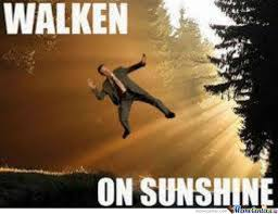 Christopher Walken Memes - christopher walken on sunshine by factor meme center