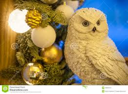 white owl stock image image of mysterious flying 48890513