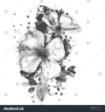 sketched flowers stock vector 415417738 shutterstock