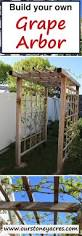 best 25 grape arbor ideas on pinterest grape vines wisteria