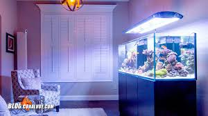 t5 lighting fixtures for aquariums giesemann aurora installation setup u0026 control coralvue current