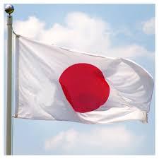 Japanese Flag Rising Sun Japan Flag 3ft X 5ft Superknit Polyester