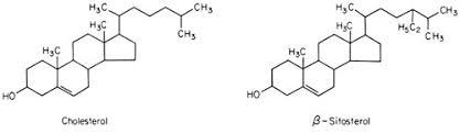 high t senior high t senior sitosterol 43 test