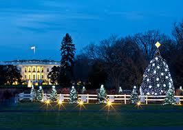 national tree lighting ceremony tree jpg