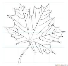 how to draw a maple leaf step by step drawing tutorials