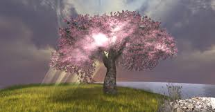 second marketplace cherry blossom tree 2 prims