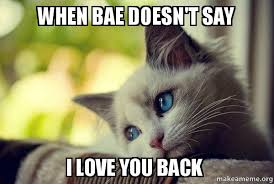 I Love You Bae Meme - when bae doesn t say i love you back first world cat problems