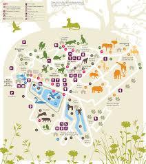 Zoo Floor Plan Paignton Zoo Interactive Map Zoomap Pinterest Interactive