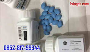 viagra asli usa viagra tablet original 0852 81799944