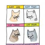 card invitation design ideas cat birthday card rectangle