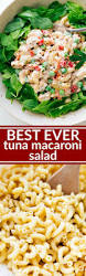 Simple Pasta Salad Recipe Best 25 Best Macaroni Salad Ideas On Pinterest Mac Salad Recipe