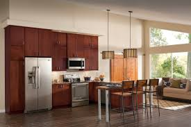 replacing hinges on kitchen cabinets decorating contemporary merillat cabinet parts for astounding