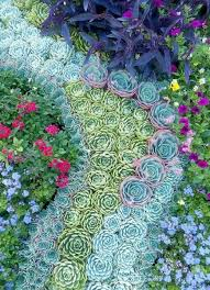 create a mosaic made from succulents along side a pathway or for