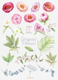 wedding flowers clipart best 25 flower clipart ideas on free clip flowers