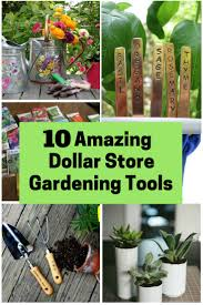 10 amazing dollar store gardening tools the budget diet