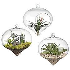 amazon com best value 3 pack glass hanging orb for plant