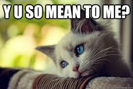 Mean Cat Meme - y u so mean to me first world cat problems quickmeme