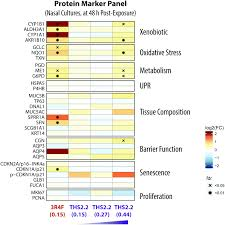 systems toxicology meta analysis of in vitro assessment studies