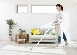 patricia house cleaning background 1 jpg east dulwich cleaning