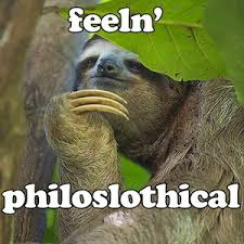 Angry Sloth Meme - funny conservative memes sloth sloth memes and meme