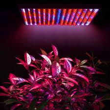 red and blue led grow lights 225led grow light l full spectrum blue red orange white quad band