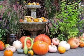 fall displays at butchart gardens fine gardening