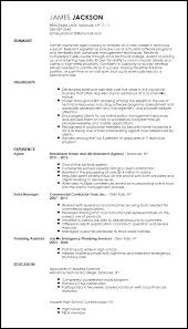 entry level it resume free entry level technical support specialist resume template