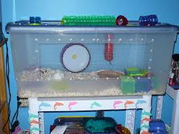 99 best good hamster cages images on pinterest hamster cages